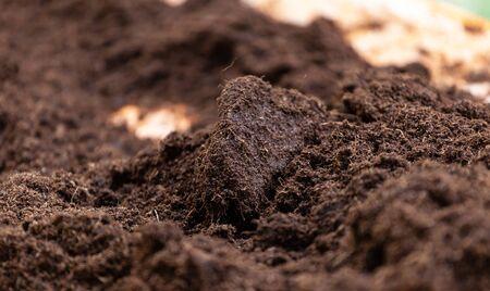 Saubere Erde für den Anbau. Die Blumenerde oder Torf eignet sich für den Gartenbau und ist eines der vier natürlichen Elemente. Das Land ist Leben für unseren Planeten Erde. Selektiver Fokus.