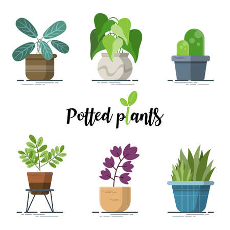 Collection of Colorful Potted plants for designers in the design of all kinds of works. easy to use and highly customizable. beautiful and modern element which can be used in many purposes