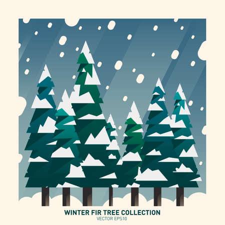 fir  tree: Snow fir tree collection