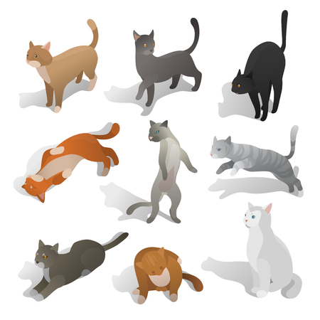 silueta de gato: Set of isometric cats in different poses, walking, seating, jumping, sleeping. Realistic cartoon style. Collection of domestic animals in isometric. Isolated vector illustration art.