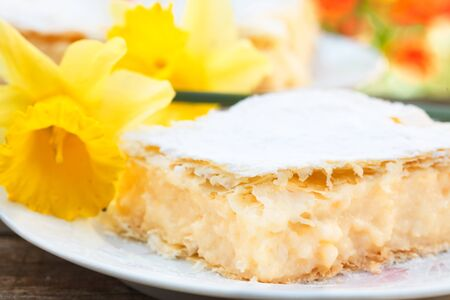 Italian cremeschnitte sweet cream pie slices on a plate. Yellow flower for a decoration. cremeschnitte.