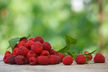 Pile of fresh Red raspberries with raspberry leaf on old wooden table, with green  blurred background. Healthy eating concept. Close up image.