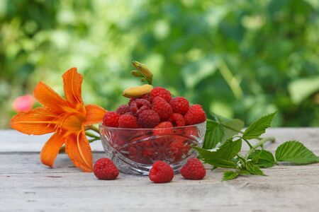 Raw Red Organic Raspberries in a crystal glass bowl decorated with orange flower. Raspberry field in blurred background.