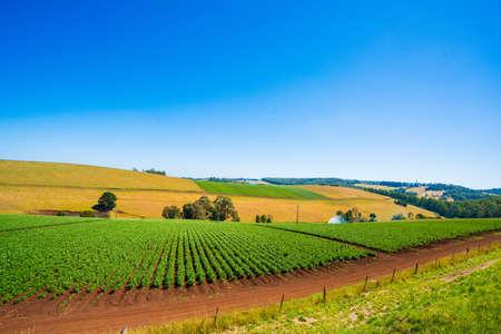 Australian farm Banque d'images
