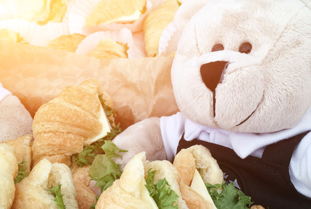 The teddy bear is sitting in the sandwich tray on the morning.
