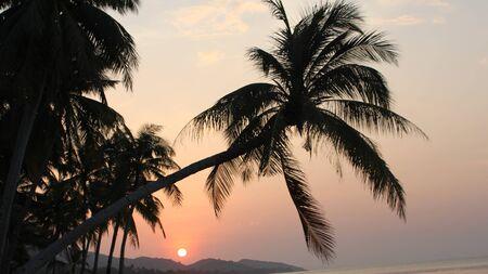Landscape of the island of Koh Samui, Thailand Stock Photo - 13489533