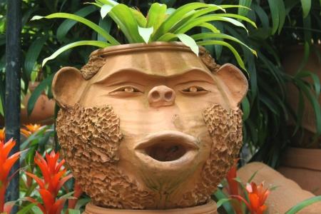 koh tao: flower pot in the shape of the head monkey island of Koh Tao, Thailand Stock Photo