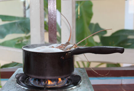 southeast asia: Seafood lobster cooked in a pan, Thailand, Southeast Asia