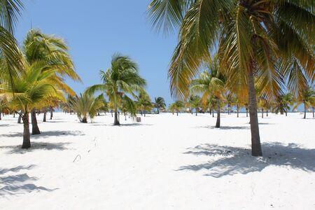 mediodía: Playa en el Mar Caribe, Cuba, Cayo Largo, al mediod�a Foto de archivo