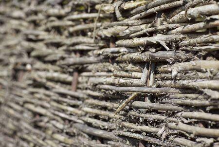 interweaving: fragment of fence plexus branches in the village