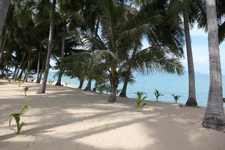 'koh samui': Scenic view of Maenam Beach Koh Samui Thailand Stock Photo