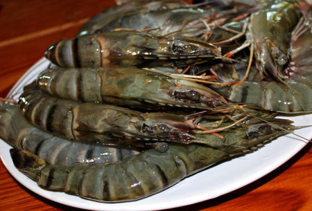 king size: Fresh shrimp king size ready for cooking
