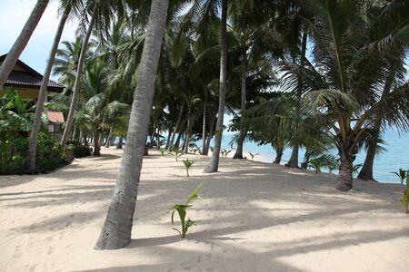 koh samui: Scenic view of Maenam Beach, Koh Samui, Thailand