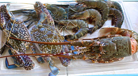 kingsize: Fresh large shrimp, crabs and lobster ready for a barbecue