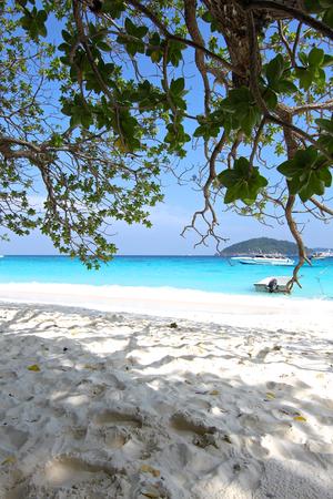 similan islands: beach in the Similan Islands, Andaman Sea, Thailand Stock Photo