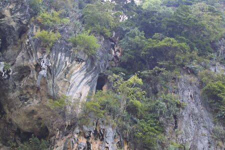 Details and forms of rocks on Railay peninsula, Krabi, Thailand Stok Fotoğraf