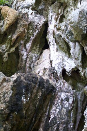 Details and forms of rocks on Railay peninsula, Krabi, Thailand Stok Fotoğraf - 96183377
