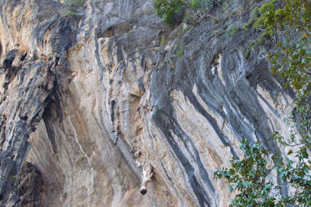 Details and forms of rocks on Railay peninsula, Krabi, Thailand Stok Fotoğraf - 96183404
