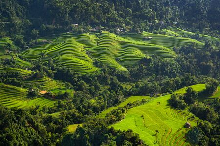 Beautiful rice terrace fields in Sa Pa town the most popular travel destinations of Northern Vietnam