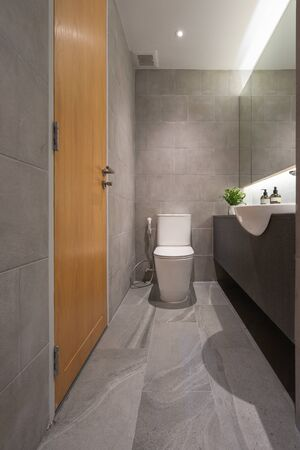 Toilet bowl in the bathroom interior architecture of rest room and decorative design, Hygiene Seat comfortable facility of auto flush toilet, hygienic restroom modern building Standard-Bild