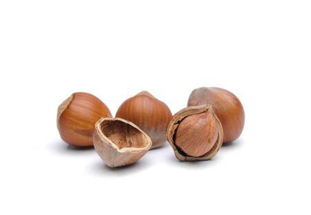 Isolated  hazelnuts Stock Photo - 4465301