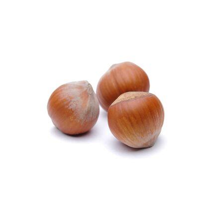 Isolated  hazelnuts Stock Photo - 4551702
