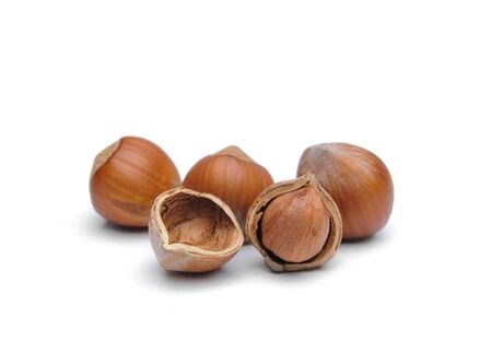 cleave: Isolated  hazelnuts Stock Photo