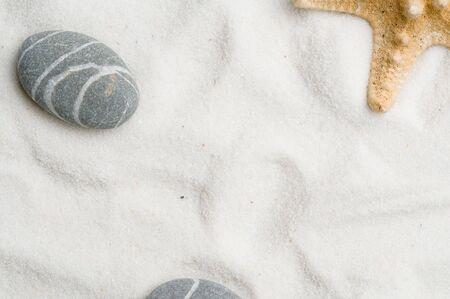 Seastar in sand photo