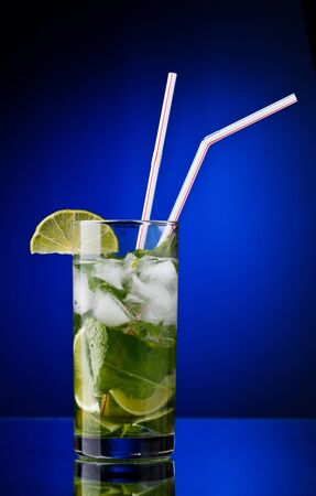 Mojito Stock Photo - 9494220