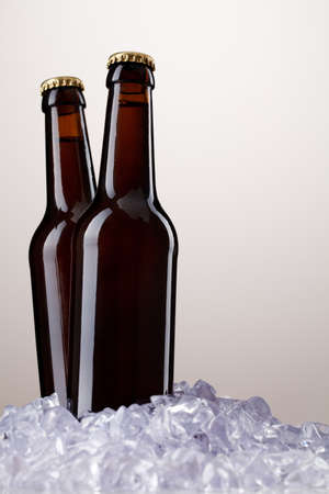 Two bottles of beer Stock Photo - 9753866