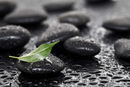 Massage stones with leaf Stock Photo - 9753600