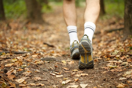 walking trail: Concetto in esecuzione