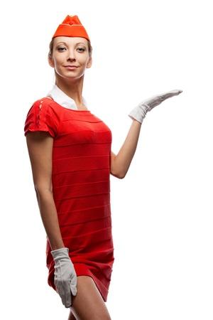 airline hostess: Pretty stewardess