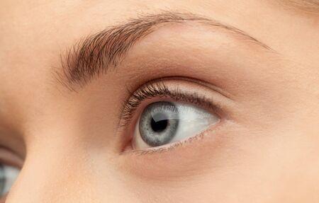 ojos hermosos: Imagen Macro del ojo humano