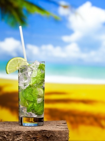Fresh mojito drink Stock Photo - 19820581
