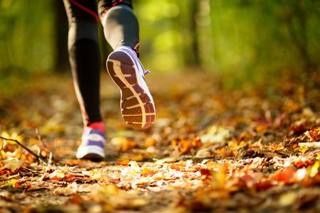 people jogging: Ejercicio de mujer caminando al aire libre, portarretrato de zapatos