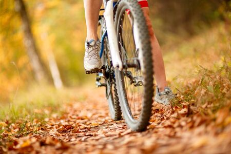 peddle: close-up of mountain bike in city park Stock Photo
