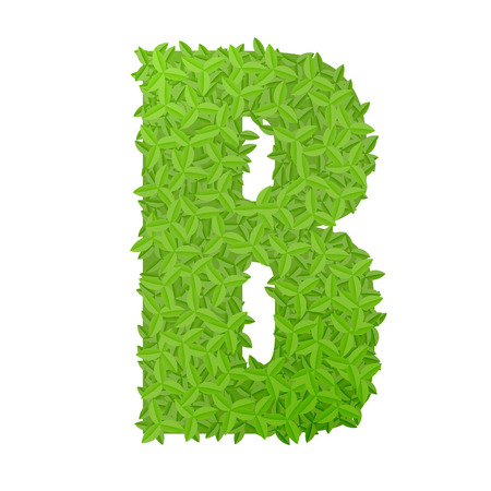 uppercase: Vector illustration of uppercase letter B consisting of green leaves
