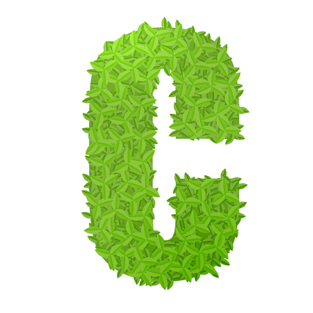 uppercase: Vector illustration of uppercase letter C consisting of green leaves