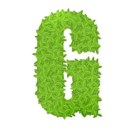 g alphabet: Vector illustration of uppercase letter G consisting of green leaves