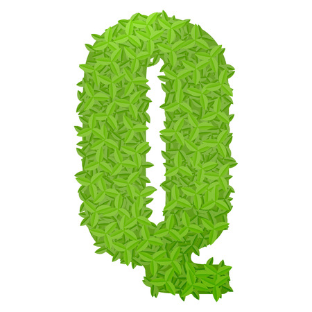 uppercase: Vector illustration of uppercase letter Q consisting of green leaves