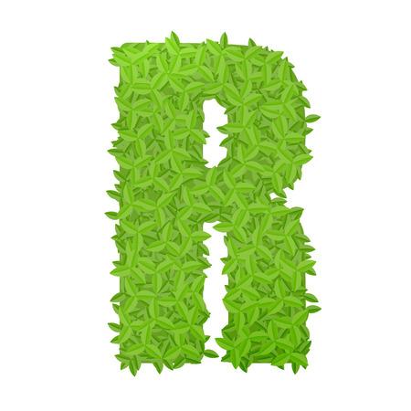 lettre alphabet: Vector illustration de la lettre majuscule R constitu� de feuilles vertes Illustration