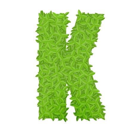 uppercase: Vector illustration of uppercase letter K consisting of green leaves Illustration