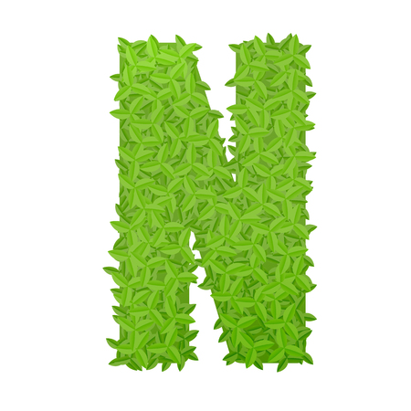letter n: Vector illustration of uppercase letter N consisting of green leaves Illustration