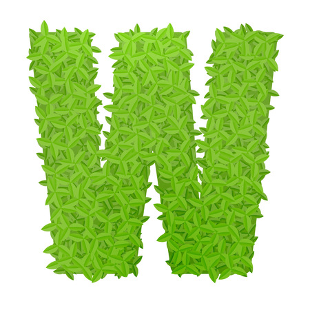 letter w: Vector illustration of uppercase letter W consisting of green leaves