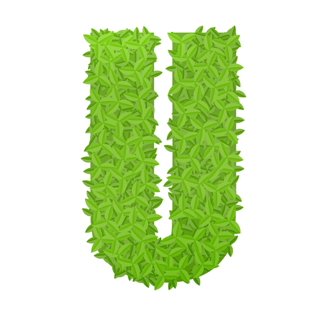 uppercase: Vector illustration of uppercase letter U consisting of green leaves
