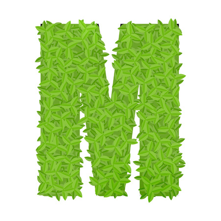 uppercase: Vector illustration of uppercase letter M consisting of green leaves Illustration