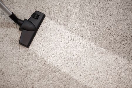 carpet clean: Cleaning beige carpet hoover. Dusty carpet and clean strip after vacuuming