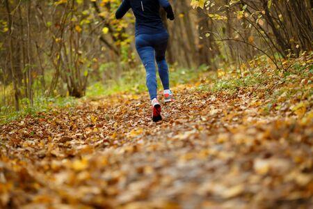 Woman in sportswear running in park in autumn