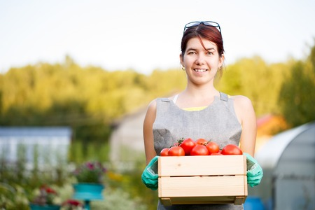 agronomist: Girl holding box with tomatoes